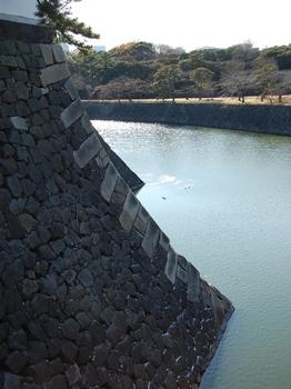 120218江戸城梅花春 (10)_S.JPG