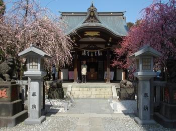 120320北野牛神社 (24)_S.JPG