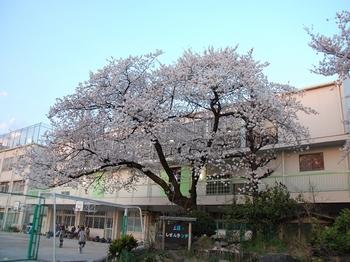 120409祐天寺 (2)_R.JPG