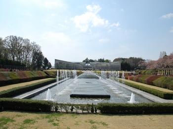 120415神代植物園 (163)_R.JPG