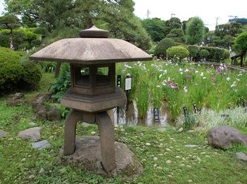 120623堀切菖蒲園 (8)_R.JPG