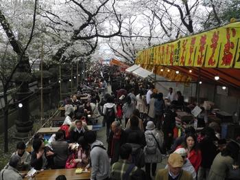 130324上野公園桜OLYM (30-2)_R.jpg