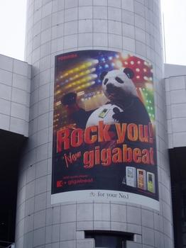 2005-109広告-10_R.JPG